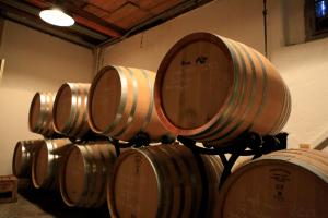 Zwölf Monate reift unser Pinot noir ganz ruhig im Barriquekeller des Weingut Diederik in Küsnacht