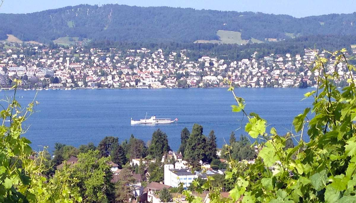 Weingut_Diederik_Ausflugtipp_Schifffahrt_auf_dem_Zurichsee